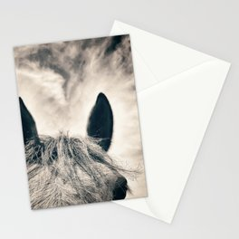 Horse and Sky - Varina Virginia 2020 Stationery Cards