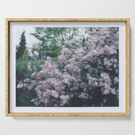 Korean Lilac Instant Film Soft Abstract Floral Feminine Wall Art Serving Tray