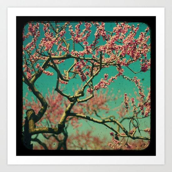 ttv Cherry tree Art Print