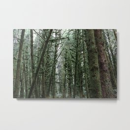 Into the Forest x Oregon Coast Metal Print