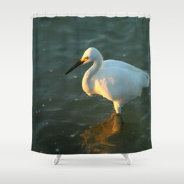 In The Evening Sun Shower Curtain