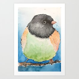 Dark-eyed junco watercolor Art Print