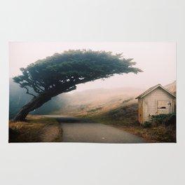 Leaning Cypress tree in Point Reyes National Seashore Rug