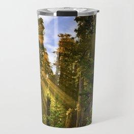 Redwood Forest Sunrise Travel Mug