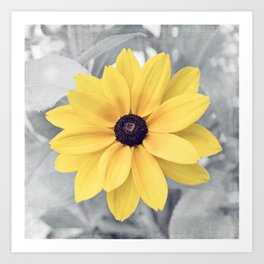 Yellow Grey Flower Photography, Yellow Gray Nature Floral Photography Art Print