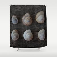 history Shower Curtains featuring Natural history by L'Accent Nou by Anastasia Egorova