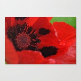 REMEMBRANCE  Canvas Print