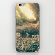 minishrooms iPhone & iPod Skin