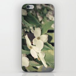 Dogwood Tree iPhone Skin