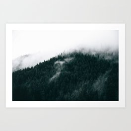 Forest Fog XIV Art Print