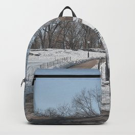 Snowy Central Park Backpack