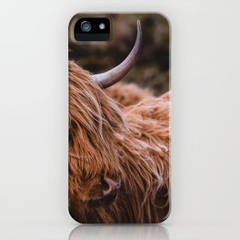 Highland Coo iPhone Case