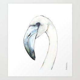 Flamingo Portrait in Blue and Ivory Art Print