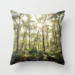 Spring Silver Birch Trees  Throw Pillow
