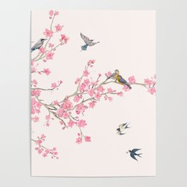 Birds and cherry blossoms Poster