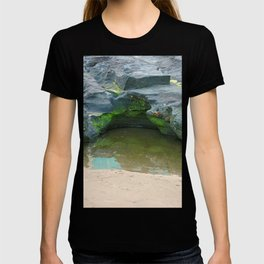 Moss on  rocks with puddle on the East Coast of Queensland, Australia T-shirt
