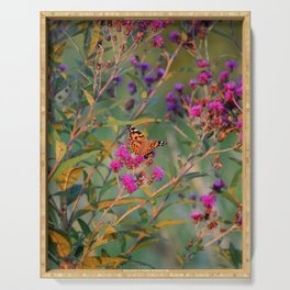 August Butterfly Serving Tray