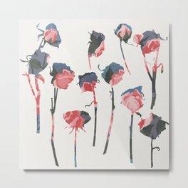 rose 1 Metal Print