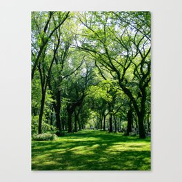 New York 9 Canvas Print