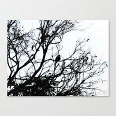 Dove Bird & Winter tree Silhouette Canvas Print