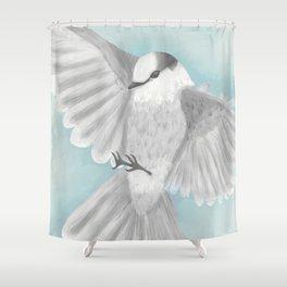 Gray Jay in Flight Shower Curtain