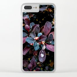 Barberry Adorned Clear iPhone Case