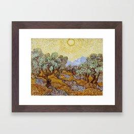 Vincent Van Gogh Olive Trees Framed Art Print