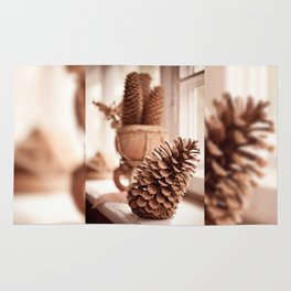 Large old dried cones on windowsill Rug