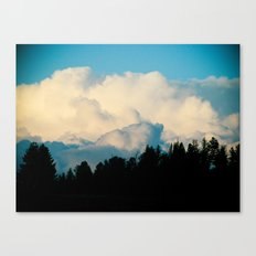 Delineation Canvas Print