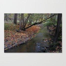 A Walk in Wildwood Canvas Print