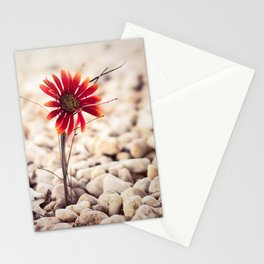 Growing Through Stationery Cards