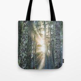 Filtered Light Tote Bag