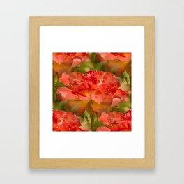 Roses Galore Framed Art Print