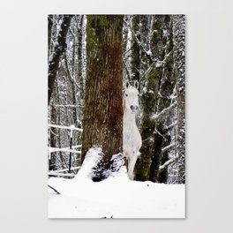 White Ghost  Canvas Print