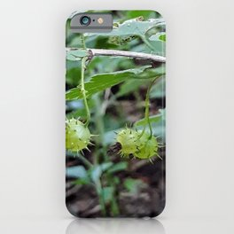 Spiky Green Gooseberry Fruit iPhone Case