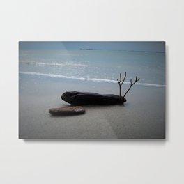 Ocean Still Life Metal Print