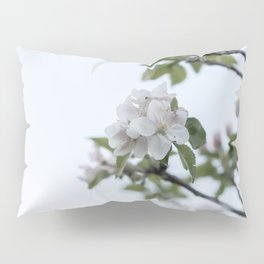 Apple tree spring blossoms Pillow Sham