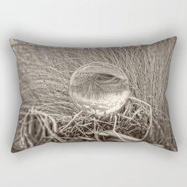 Crystal Ball, Lens Ball in Grass by the Ocean, Sepia Rectangular Pillow