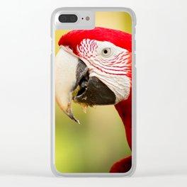Birds Clear iPhone Case
