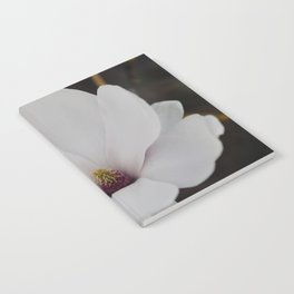 Magnolia Portrait Notebook