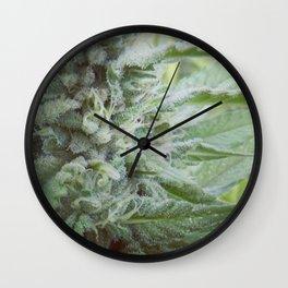 White Widow Wall Clock