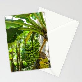 La Mancha de Plátano Stationery Cards