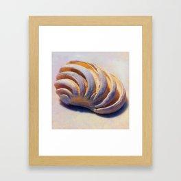 Imperial Venus Sea Shell Framed Art Print