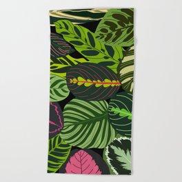 CALATHEA COLLECTION Beach Towel
