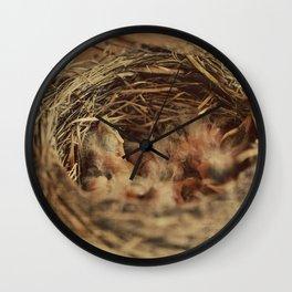 Baby Robbin Wall Clock