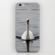 Graceful iPhone & iPod Skin