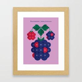 Fruit: Blackberry Framed Art Print