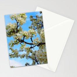 Fancy Branchy Stationery Cards