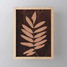Botanicus (33) Framed Mini Art Print