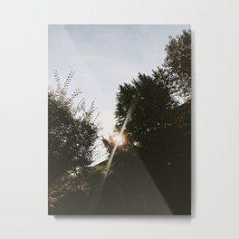 Sunshine Metal Print